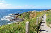 Lizard Point And Polbream Cove