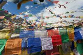 picture of himachal  - Prayer flags with stupas  - JPG