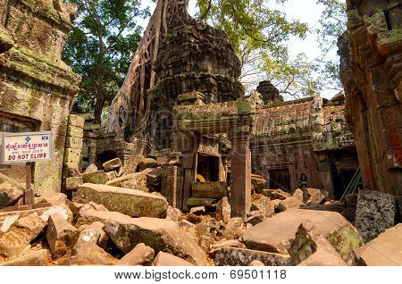 Ta Prohm Destruction