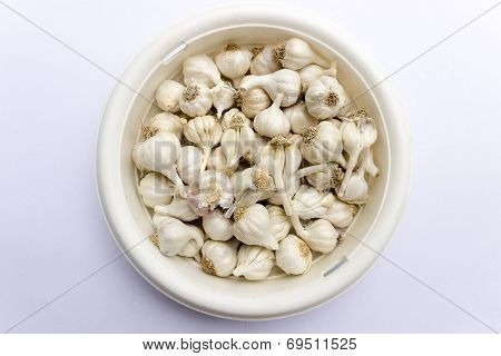 Raw garlic's kept on a container on an isolated background