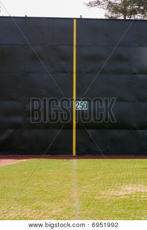 Foul line and fence