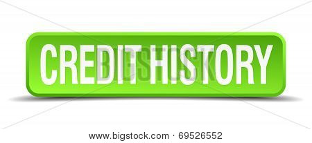 Credit History Green 3D Realistic Square Isolated Button