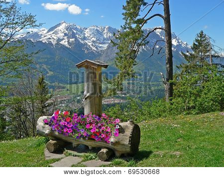 Idyllic Mountainous Scenery With Flowers In A Drinking Trough, Zugspitze