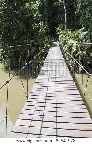 The Rope Bridge.
