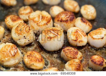 Fresh scallops pan fried in butter.