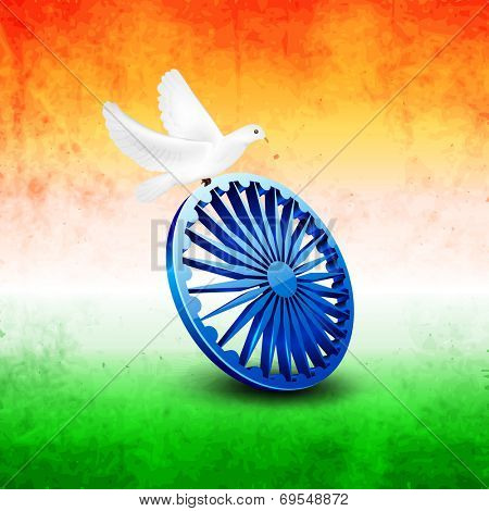 Beautiful white pigeons sitting on Asoka Wheel on national tricolors grungy background for 15th of August, Indian Independence Day celebrations.