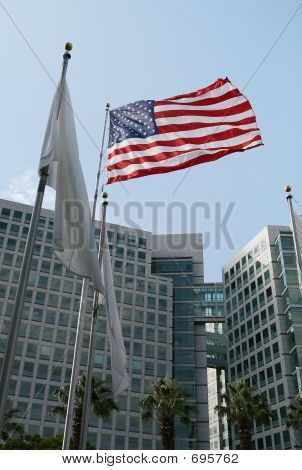 Flag And Corporate Building
