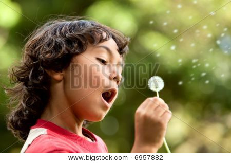 Boy Playing With A Flower