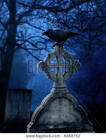 Cemetery Crow