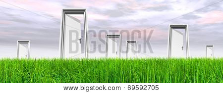High resolution green, fresh and natural 3d conceptual grass over a blue sky background banner, a opened door at horizon