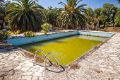picture of neglect  - water has turned green with algae in a neglected swimming pool in an abandoned holiday complex - JPG