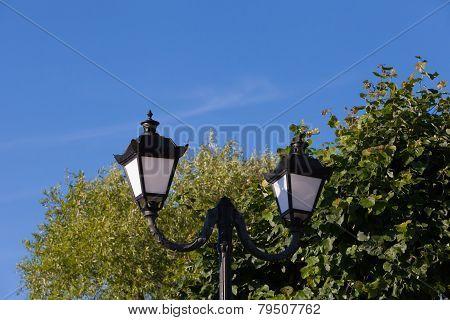 streetlight against trees