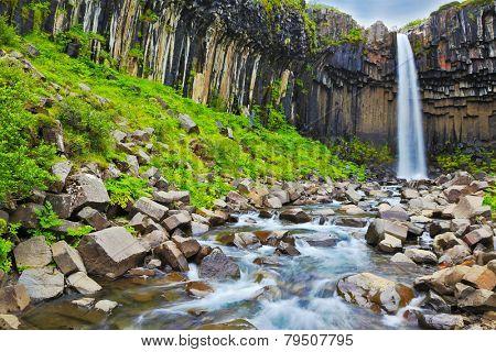 Black basalt columns frame the water jet. Magnificent waterfall Svartifoss in Icelandic Skaftafell park