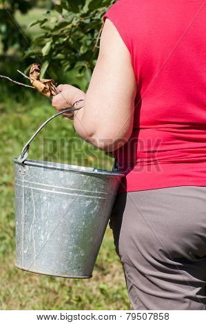 the woman holds a garden bucket