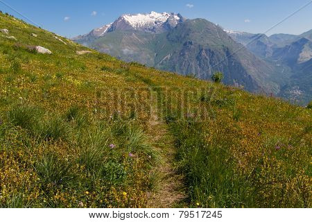 Hiking the Alpes