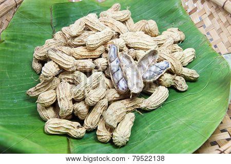 Peanut Boiled On Banana Leaf 02