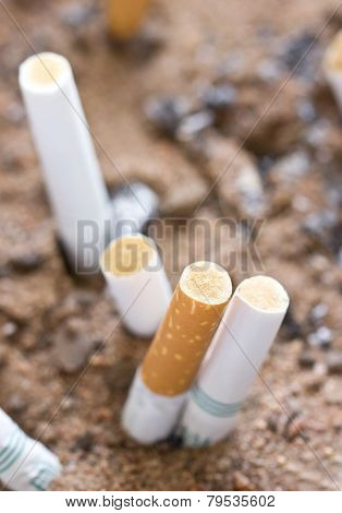 Close Up Of Smoked Cigarette In Sand.