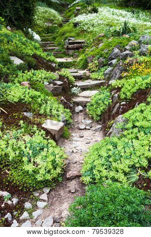 Stony Path And Stairs In The Green Garden