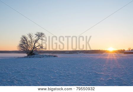 Landscape in winter