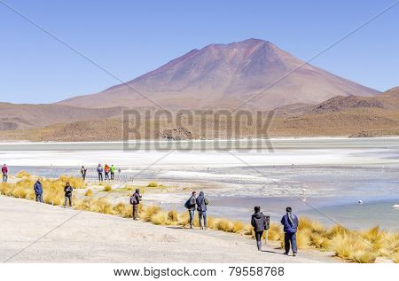 SALAR DE UYUNI, BOLIVIA, MAY 16, 2014: Tourists visit beautiful Laguna Hedionda