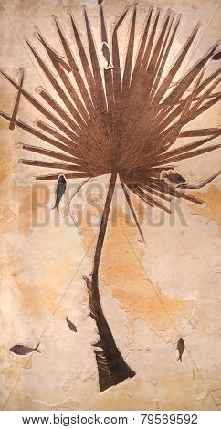 Fossil Palm With Fish