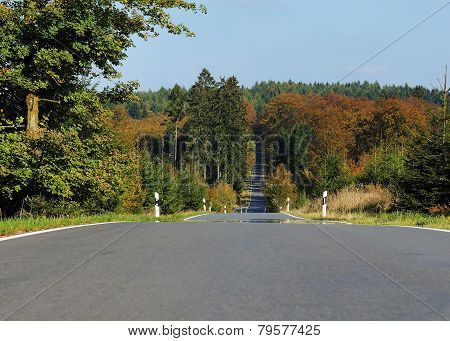 Country Road At Autumn