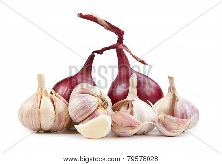 Onion End Garlic Isolated On White Background