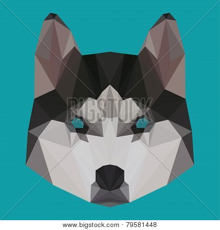 Polygonal Geometric Triangle Abstract Husky Background