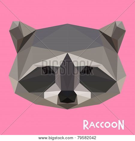 Polygonal Geometric Triangle Abstract Raccoon Background