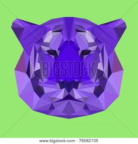 Bright Colored Polygonal Geometric Triangle Abstract Tiger Background
