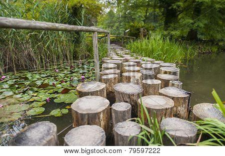 Arboretum Volcji Potok, park, Kamnik, Slovenia