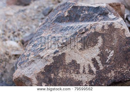 Sloan Canyon Bighorn Petroglyph