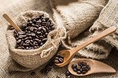 picture of coffee coffee plant  - Coffee beans in coffee bag made from burlap on Sack surface - JPG