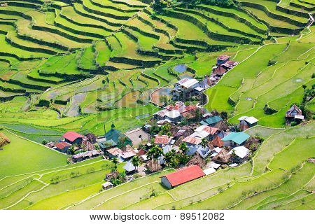 Rice Terraces In The Philippines. The Village Is In A Valley Among The Rice Terraces. Rice Cultivati