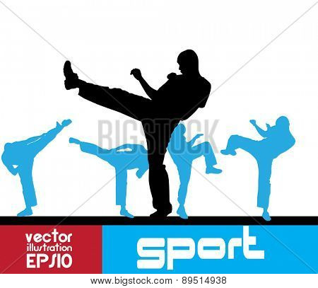 Sport. Karate illustartion, vector