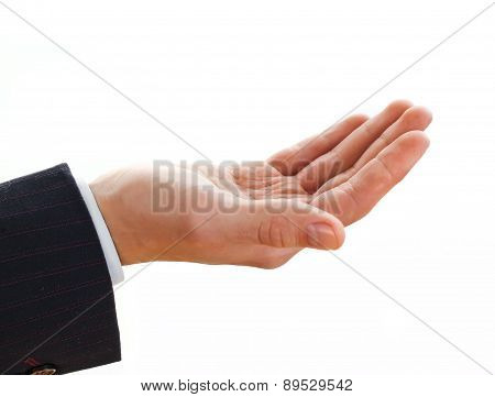 Business hands