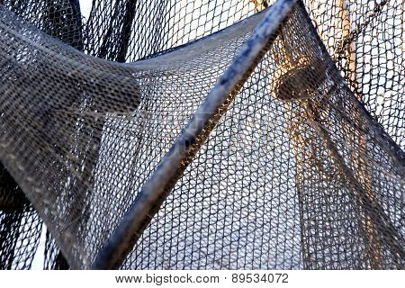 Fishung Net