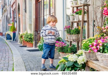Outdoor portrait of a cute little boy playing with flowers