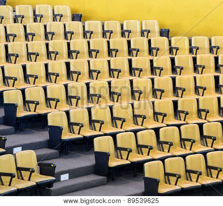 Yellow Chairs In Conference Hall