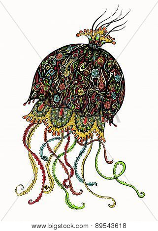 Ornate Jellyfish