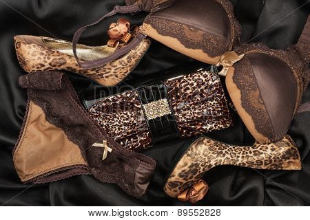 Sexy Lingerie And Leopard Purse And Leopard Shoes