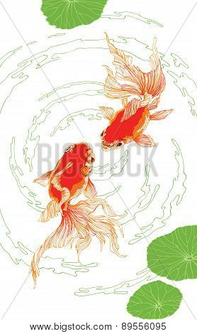 Two Red Golden Fish On White Background Vector Vertical