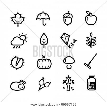Collection of icons representing autumn season and autumn activities.
