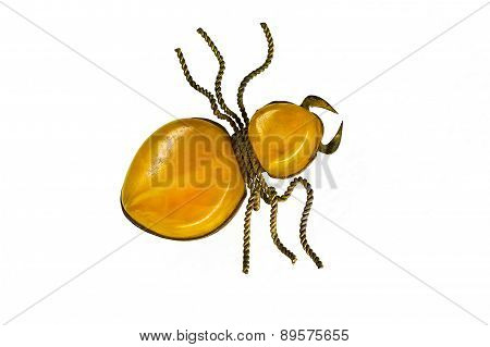 amber brooch on a white background