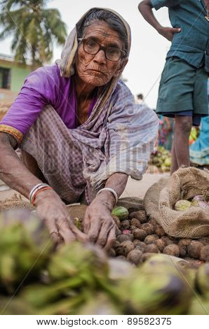 KAMALAPURAM, INDIA - 02 FEBRUARY 2015: Elderly Indian woman selling vegatables on a market close to Hampi