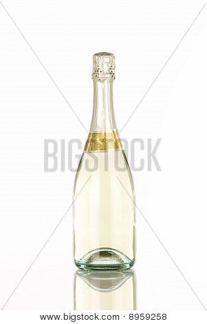 Single Champagne Bottle