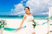 picture of wedding arch  - Wedding ceremony on a tropical beach in blue - JPG