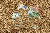 stock photo of soy bean  - Agricultural concept heap of soy beans and Euro banknotes - JPG