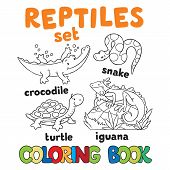 picture of jungle snake  - Set of funny crocodile - JPG