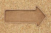 pic of sackcloth  - Pointer made from rope with grain pearl barley lying on sackcloth with space for your text - JPG